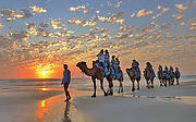 Iconic sunset camel ride on Cable Beach